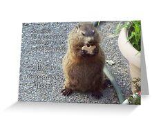 Groundhog Day - Feast Greeting Card