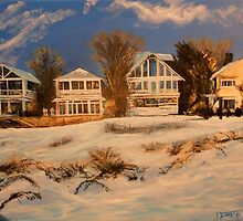 Long Island Winter from Photo by ToriYule by Jsimone