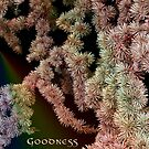 Goodness by Roger Sampson