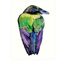 Reflecting Raven Art Print