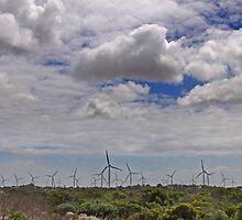 Yorke Penisula Wind Farm by pablosvista2