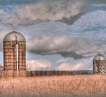 Two silos on a winter day by vigor
