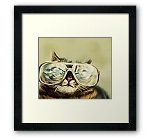 Cute Cat With Glasses Framed Print
