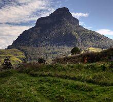 Mount Lindesay • Queensland • Australia by William Bullimore
