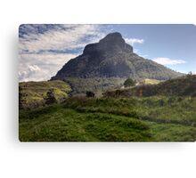 Mount Lindesay • Queensland • Australia Metal Print