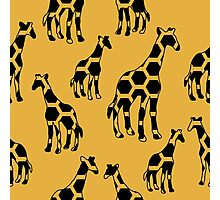 Giraffe pattern Photographic Print