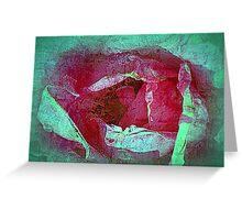 Texture Pink Rose Greeting Card