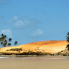 Brasilian Beach # 2 by GUNN-PHOTOS