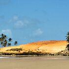 Brasilian Beach # 2 by GUNN-PHOTOS