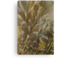 The Beauty of Corn Canvas Print