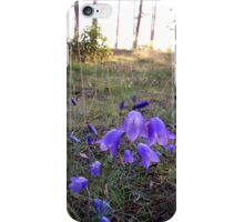Bluebells in the Evening iPhone Case/Skin