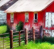 Rustic Red by Nadya Johnson