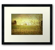 ~ A different View ~ Framed Print