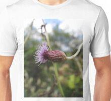 Black Knapweed profile Unisex T-Shirt