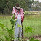 Scarecrow by SuddenJim