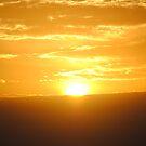 Good Morning Sunshine by luvinmynikon
