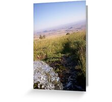 Artesian well on top of the Big Horn Mountains, WY Greeting Card