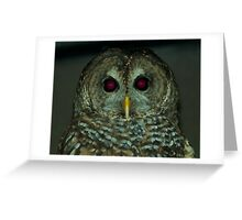 Owl! Greeting Card