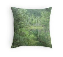 Grace Lake  Throw Pillow