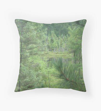 Grace Lake  Throw Pillow