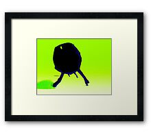 green insect Framed Print