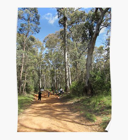 The Road To Mt Coree near Canberra - Australia. Poster