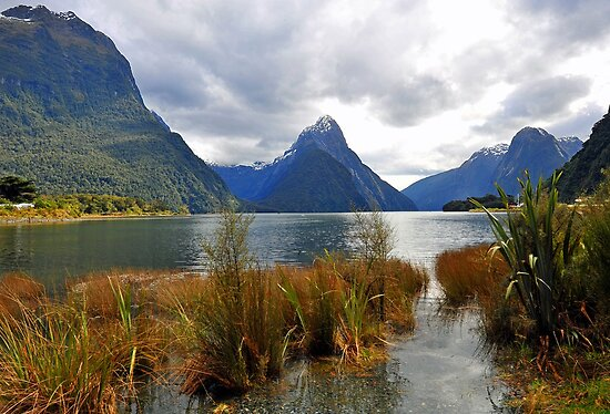 Milford Sound. South Island. New Zealand by Ralph de Zilva