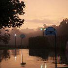 DC Rain by tyrannous