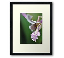 The Tongue of the Dragon Framed Print
