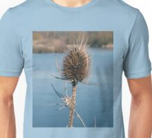 Water reed close up Unisex T-Shirt