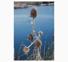 Water reeds Kids Tee