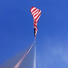 run it up the flagpole by dedmanshootn