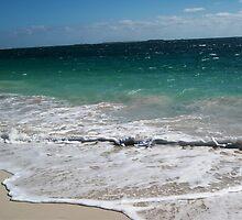 Coastal Views by TeenyLeigh