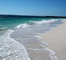 Ocean Views by TeenyLeigh