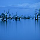 Lake Wetherell by Heath Carney
