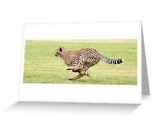 Cheetah Sprint Greeting Card