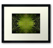 Xylochalic Centro-Mandalism Framed Print