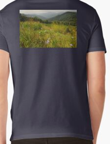 Blue Ridge Mountains.of Virginia Mens V-Neck T-Shirt