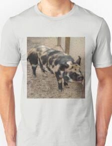 Black & Brown Pig T-Shirt