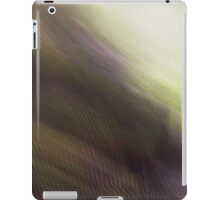 The Light at the End of the Valley iPad Case/Skin