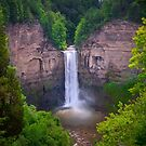 Taughannock Falls by David Lamb