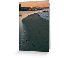 Dawning of a New Year Greeting Card