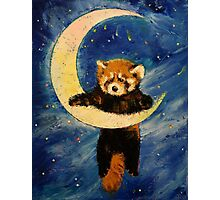 Red Panda Stars Photographic Print