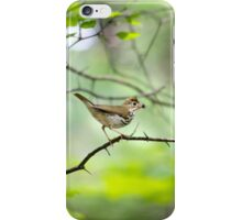 Spring Forest iPhone Case/Skin