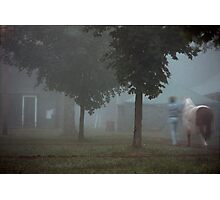 Morning Walk Photographic Print