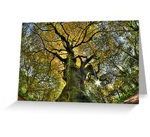 Autumn Giant's Golden Boughs Greeting Card