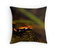Ready! Throw Pillow