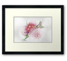 Spice Garden Framed Print