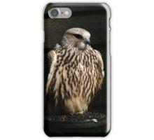 Saker Falcon iPhone Case/Skin