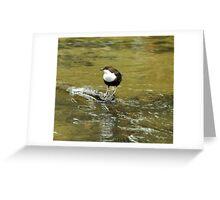 Dipper Greeting Card